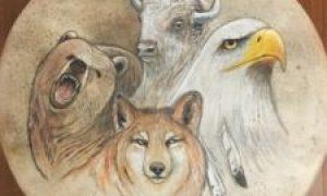 animales 4 direcciones