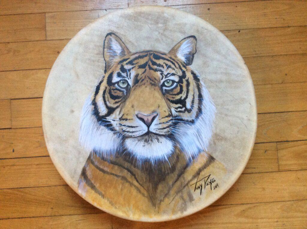 Tigre pintado por Tony